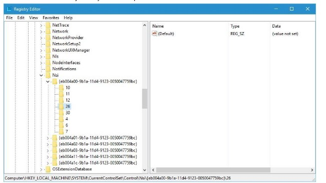 windows sockets registry entries missing