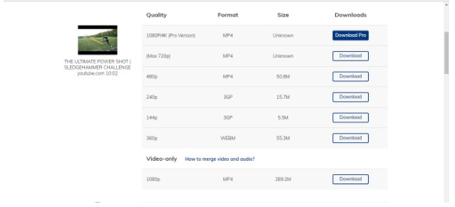 online video download tool