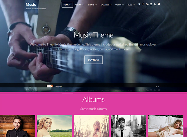 5+ Best Premium WordPress Themes