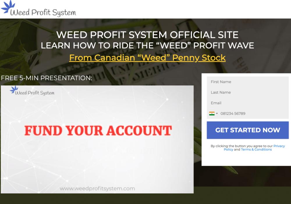 profit system