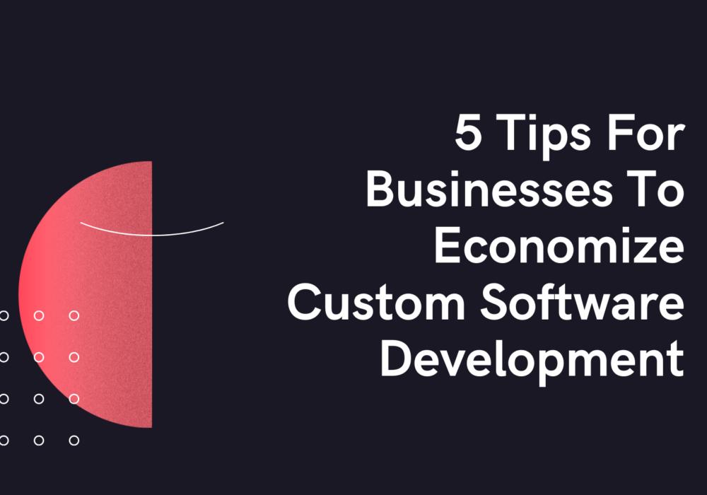 5 Tips For Businesses To Economize Custom Software Development